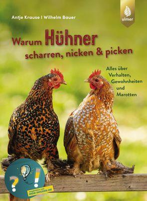 Warum Hühner scharren, nicken und picken von Bauer,  Wilhelm, Krause,  Antje
