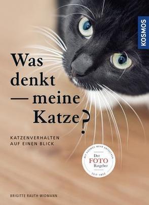 Was denkt meine Katze von Rauth-Widmann,  Brigitte