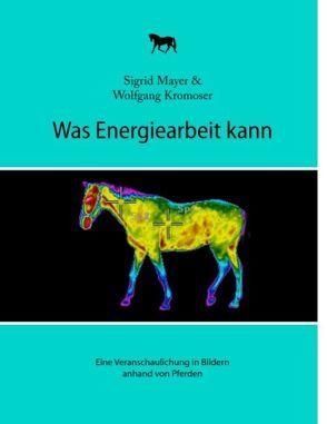 Was Energiearbeit kann von Kromoser,  Wolfgang, Mayer,  Sigrid