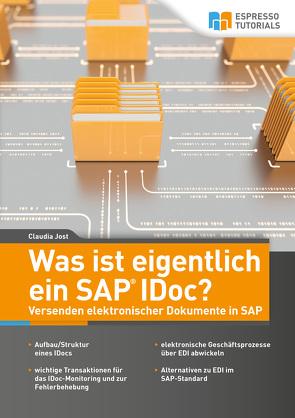 Was ist eigentlich ein SAP IDoc? Versenden elektronischer Dokumente in SAP von Jost,  Claudia