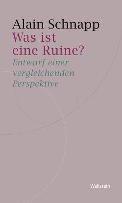 Was ist eine Ruine? von Schnapp,  Alain, Wittenburg,  Andreas