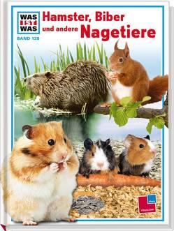 Was ist was, Band 128: Hamster, Biber und andere Nagetiere von Brandstetter,  Johann, Steghaus-Kovac,  Sabine