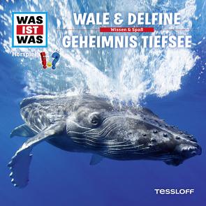WAS IST WAS Hörspiel. Wale & Delfine / Geheimnis Tiefsee. von Baur,  Dr. Manfred, Carlsson,  Anna, Haßler,  Sebastian, Illi,  Günther, Krumbiegel,  Crock, Riedl,  Jakob