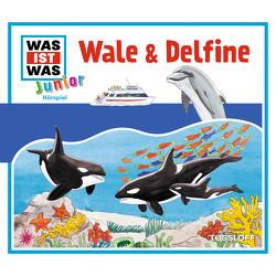 WAS IST WAS Junior Hörspiel. Wale und Delfine von Brömme,  Bettina, Lehmann-Horn,  Markus, Rau,  Katja, Semar,  Kristiane