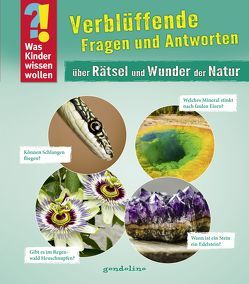 Was Kinder wissen wollen: Verblüffende Fragen und Antworten über Rätsel und Wunder der Natur