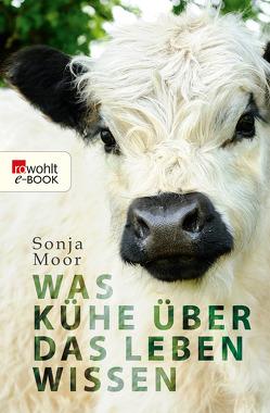 Was Kühe über das Leben wissen von Moor,  Sonja
