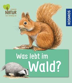 Was lebt im Wald? von Köhrsen,  Andrea, Oftring,  Bärbel, Walentowitz,  Steffen