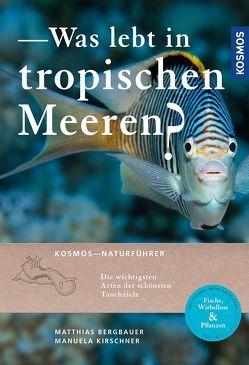 Was lebt in tropischen Meeren? von Bergbauer,  Matthias, Kirschner,  Manuela