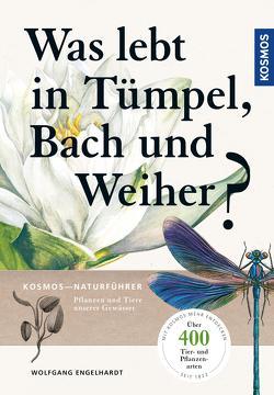 Was lebt in Tümpel, Bach und Weiher von Engelhardt,  Wolfgang