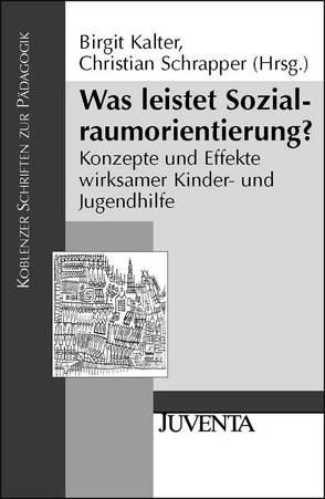 Was leistet Sozialraumorientierung? von Kalter,  Birgit, Schrapper,  Christian