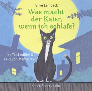Was macht der Kater, wenn ich schlafe? von Lambeck,  Silke, Manteuffel,  Felix von, Teich,  Karsten, Teichmüller,  Ilka