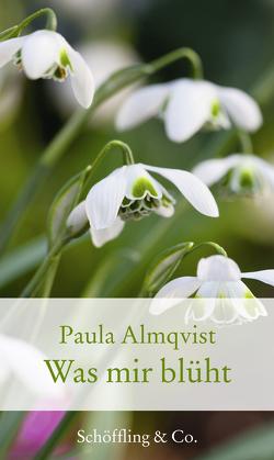Was mir blüht von Almqvist,  Paula