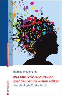 Was MusiktherapeutInnen über das Gehirn wissen sollten von Stegemann,  Thomas