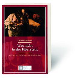 Was nicht in der Bibel steht von Plisch,  Uwe-Karsten