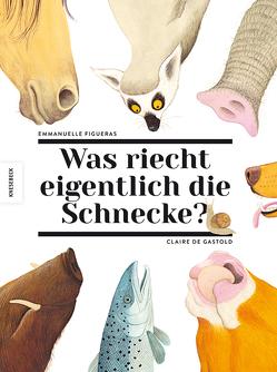 Was riecht eigentlich die Schnecke? von de Gastold,  Claire, Figueras,  Emmanuelle, Orth,  Jutta