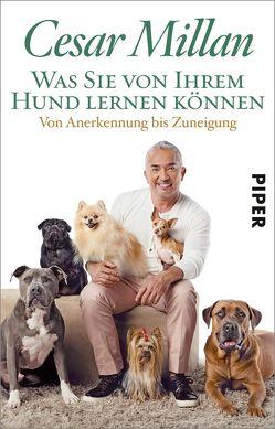 Was Sie von Ihrem Hund lernen können von Häußler,  Sonja, Keßler,  Norma, Millan,  Cesar, Trautner-Suder,  Christa
