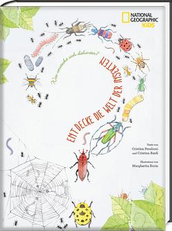 Was versteckt sich dahinter? Entdecke die Welt der Insekten