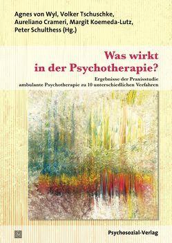 Was wirkt in der Psychotherapie? von Crameri,  Aureliano, Grünwald,  Hugo, Koemeda-Lutz,  Margit, Müller-Locher,  Peter, Schlegel,  Mario, Schulthess,  Peter, Tschuschke,  Volker, von Wyl,  Agnes