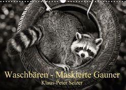 Waschbären – Maskierte Gauner (Wandkalender 2018 DIN A3 quer) von Selzer,  Klaus-Peter