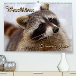 Waschbären (Premium, hochwertiger DIN A2 Wandkalender 2021, Kunstdruck in Hochglanz) von Berg,  Martina