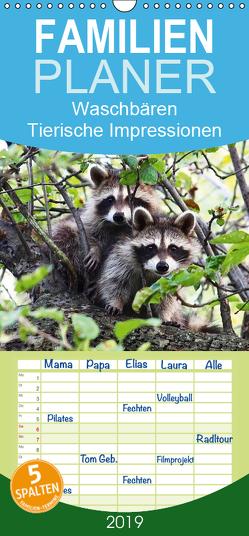 Waschbären – Tierische Impressionen – Familienplaner hoch (Wandkalender 2019 , 21 cm x 45 cm, hoch) von Lehmann (Hrsg.),  Steffani