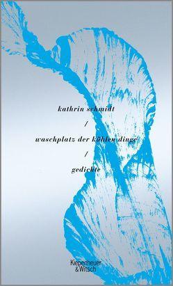 waschplatz der kühlen dinge von Schmidt,  Kathrin