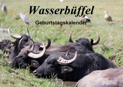 Wasserbüffel – Geburtstagskalender (Wandkalender 2020 DIN A2 quer) von Gayde,  Frank