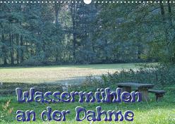 Wassermühlen an der Dahme (Wandkalender 2020 DIN A3 quer) von Morgenroth,  Peter