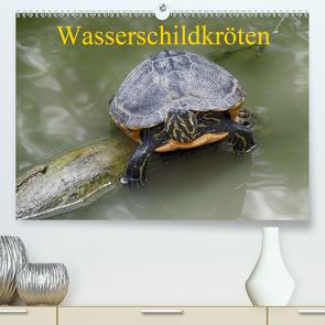 Wasserschildkröten (Premium, hochwertiger DIN A2 Wandkalender 2021, Kunstdruck in Hochglanz) von Kretschmann,  Klaudia