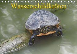 Wasserschildkröten (Tischkalender 2019 DIN A5 quer) von Kretschmann,  Klaudia