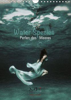 Water Species – Perlen des Meeres (Wandkalender 2019 DIN A4 hoch) von Helbig,  Maike