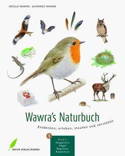 Wawra's Naturbuch, Bd. 1: Säugetiere, Vögel, Reptilien, Amphibien von Wawra,  Johannes, Wawra,  Ursula