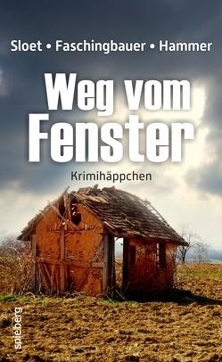 Weg vom Fenster von Faschingbauer,  Manfred, Hammer,  Wolfgang, Sloet,  Rolf Peter