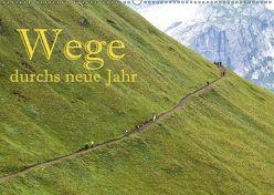 Wege durchs neue Jahr (Wandkalender 2018 DIN A2 quer) von Pfleger,  Hans