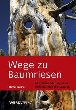 Wege zu Baumriesen von Brunner,  Michel