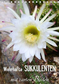 Wehrhafte Sukkulenten mit zarten Blüten (Tischkalender 2019 DIN A5 hoch) von Kruse,  Gisela