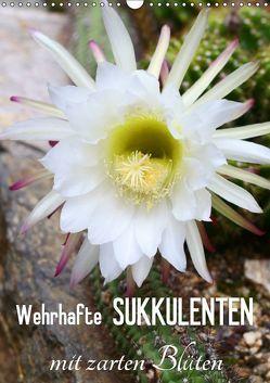 Wehrhafte Sukkulenten mit zarten Blüten (Wandkalender 2019 DIN A3 hoch) von Kruse,  Gisela