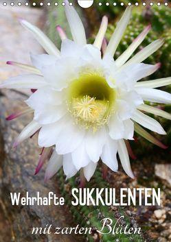 Wehrhafte Sukkulenten mit zarten Blüten (Wandkalender 2019 DIN A4 hoch) von Kruse,  Gisela