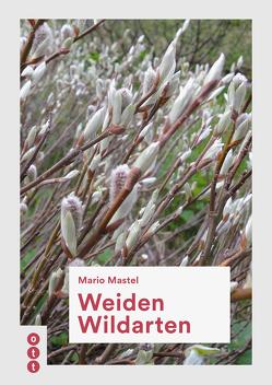 Weiden Wildarten von Mastel,  Mario