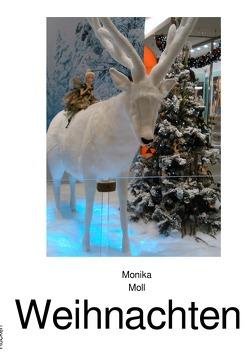 Weihnachten von Moll,  Monika