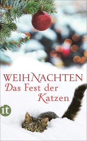 Weihnachten — Das Fest der Katzen von Dammel,  Gesine