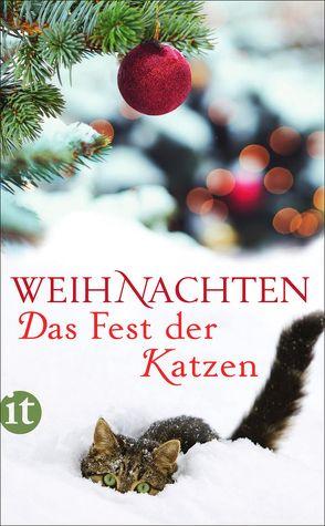 Weihnachten – Das Fest der Katzen von Dammel,  Gesine