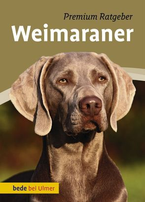 Weimaraner von Schmitt,  Annette