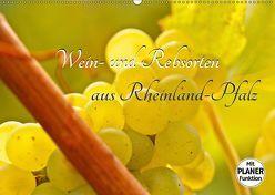 Wein- und Rebsorten aus Rheinland-Pfalz (Wandkalender 2019 DIN A2 quer) von Eberlein,  Andreas, Kärcher,  Markus