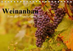 Weinanbau. Von der Traube zum Wein (Tischkalender 2021 DIN A5 quer) von Stanzer,  Elisabeth