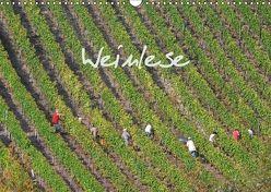 Weinlese (Wandkalender 2018 DIN A3 quer) von v.d. Lese,  Hans