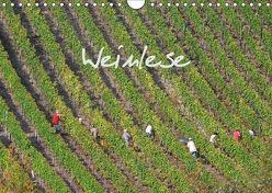 Weinlese (Wandkalender 2018 DIN A4 quer) von v.d. Lese,  Hans