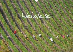 Weinlese (Wandkalender 2019 DIN A3 quer) von v.d. Lese,  Hans