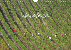 Weinlese (Wandkalender 2019 DIN A4 quer) von v.d. Lese,  Hans