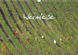 Weinlese (Wandkalender 2020 DIN A3 quer) von v.d. Lese,  Hans